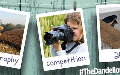 2018 Season Photography Competition – Win a Holiday!