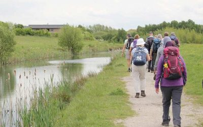 The National Forest Walking Festival