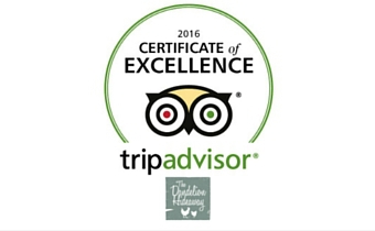 Fifth Year Certificate of Excellence from Trip Advisor